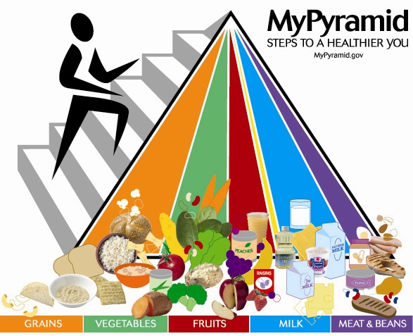 food pyramid lesson plan hello healthy girl